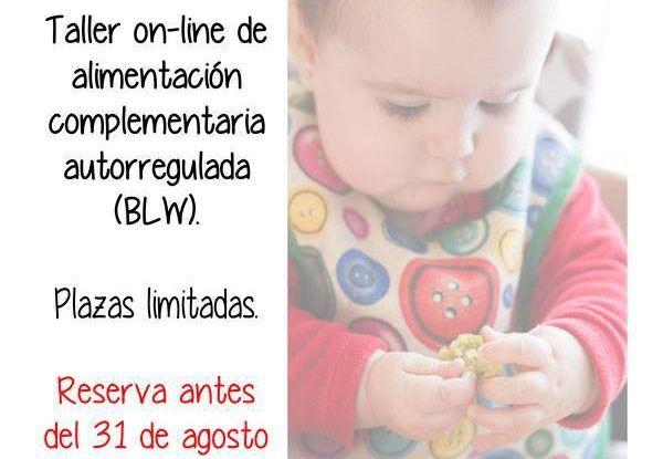 Taller online de alimentación para bebés