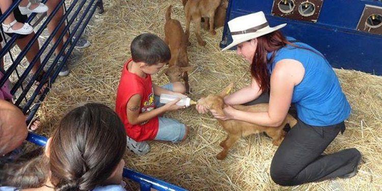 taller infantil fiesta cabra malagueña