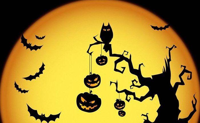 Halloween en La Casa del Libro de Málaga