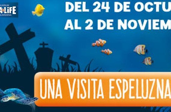 sealife hallowen 15