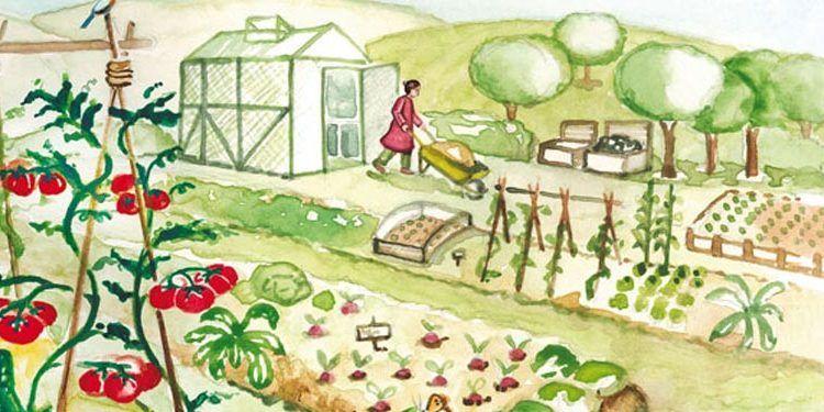 taller siembra librería libritos ilustración ecología sostenibilidad cabecera