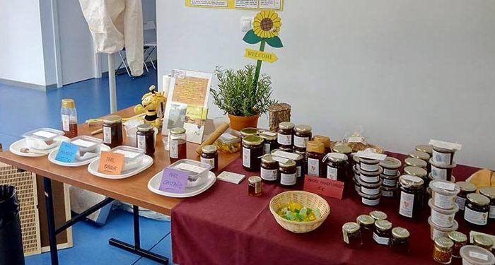curso apicultura bee garden cata experiencia cabecera