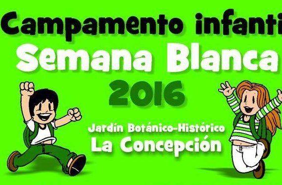 actividades para niñas y niños en Semana Blanca en la Finca de la Concepción