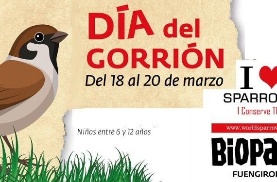 Día del gorrión en Bioparc Fuengirola