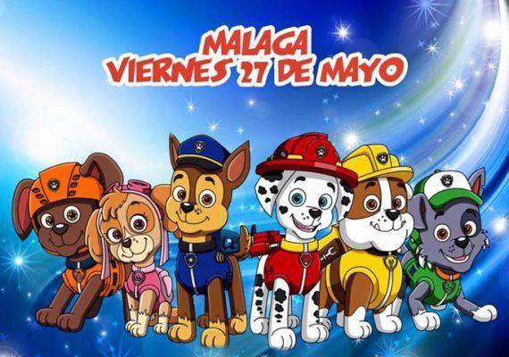 Aventura Canina en Málaga