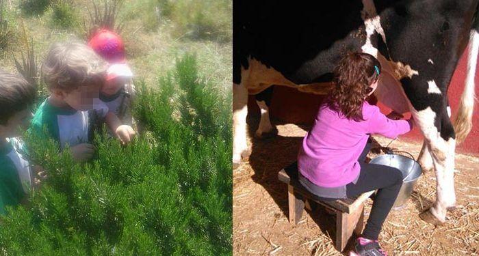 Campamento de verano ecológico y natural en Granja Escuela JM Pizarra 05