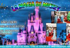 Fiesta infantil de Mickey en Riosol