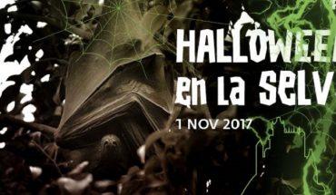 Halloween Bioparc Fuengirola