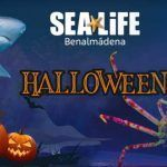 Halloween Sea Life