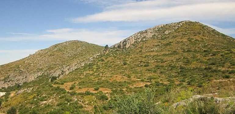 Pinares de San Antón