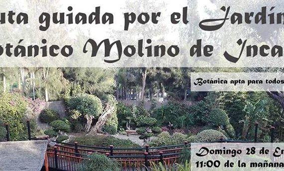 Ruta Botánica Torremolinos Málaga
