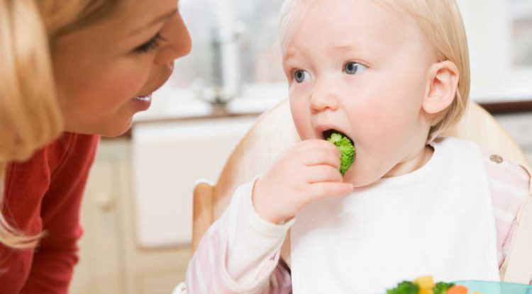 nutricion baby led weaning