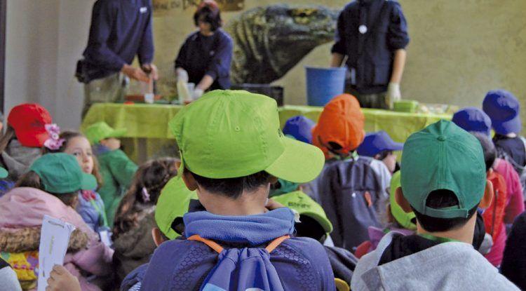 Campamento de verano en Bioparc Fuengirola