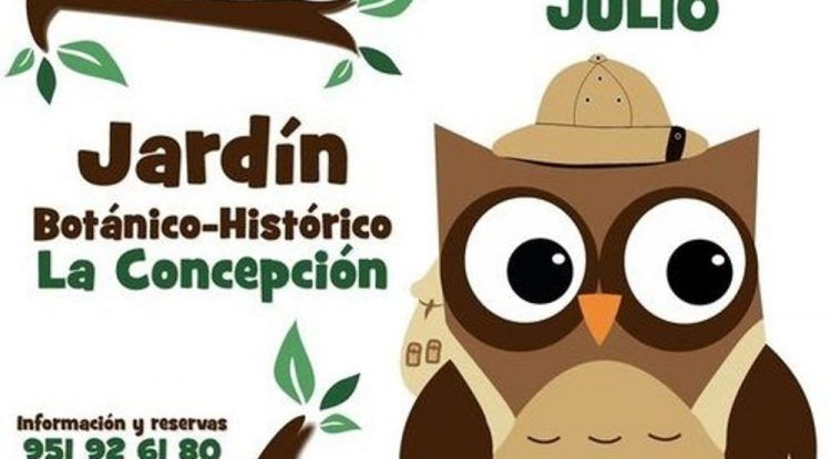 Cartel campamento de verano para niños del Jardín Botánico