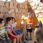 Campamento de verano para niños en Selwo Marina Benalmádena