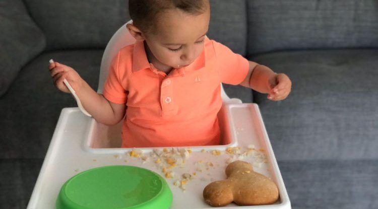 Salud Nutritiva. Alimentación complementaria