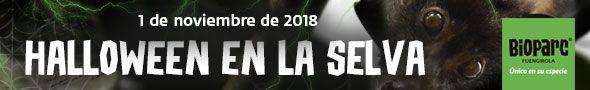 Halloween 2018 Bioparc Fuengirola