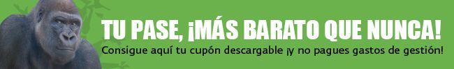 Descarga el cupón pase anual Bioparc Fuengirola