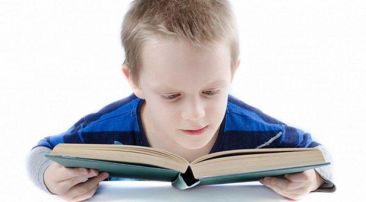6 libros de dinosaurios para niños