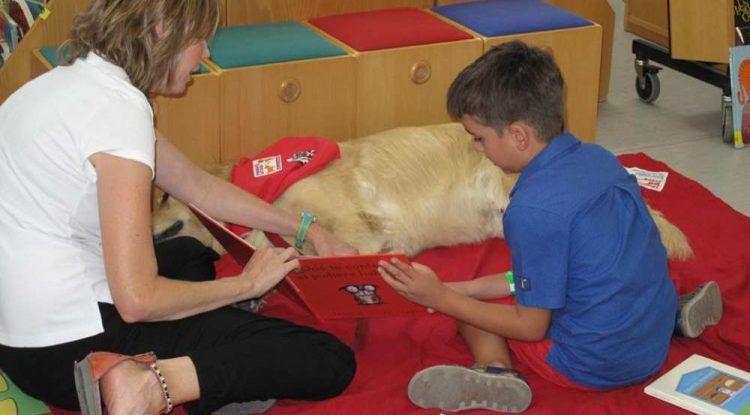 Taller de lectura gratuito para niños con el perro Otto en la Biblioteca Provincial de Málaga