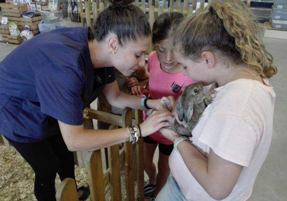 Campamentos veterinarios para niños durante mayo en Málaga con Sportislive