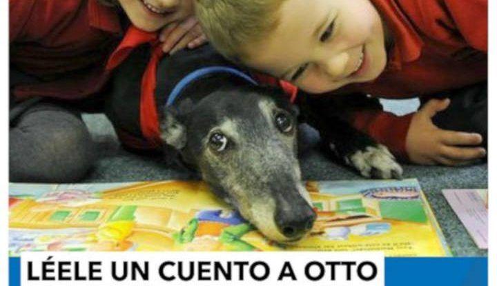 Cuentacuentos, talleres y música gratis para niños en la Biblioteca Cánovas del Castillo de Málaga durante mayo