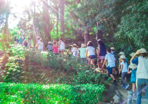 Campamento de verano infantil en el Jardín Botánico La Concepción de Málaga