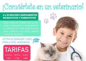 Campamento veterinario Sporislive