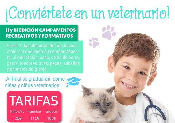 Campamento veterinario Sportislive en Verdecora Málaga
