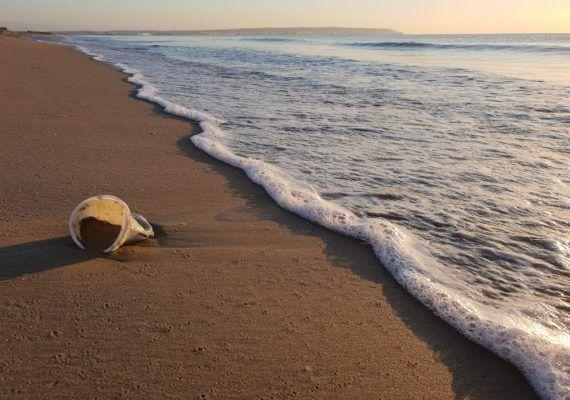 Datos para concienciar a los niños sobre la limpieza de las playas