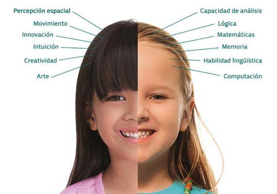 Elefun Málaga: cómo mejorar la concentración de los niños de una forma divertida