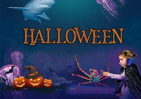 Actividades de Halloween para niños en Sea Life Benalmádena