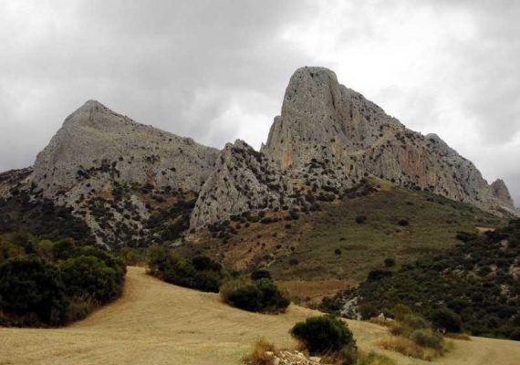 Ruta de senderismo en familia por Pulgarín Alto - Alfarnate