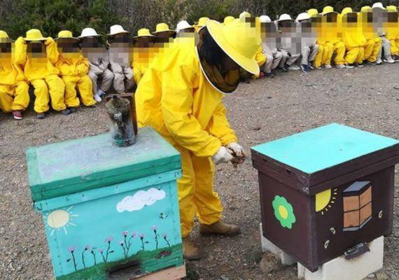 Jornada familiar de apicultura en el Museo de la Miel de Málaga