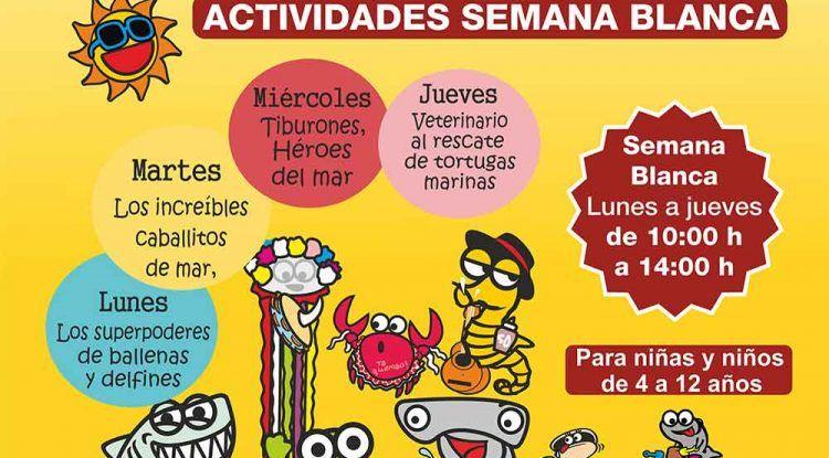 Campamento de Semana Blanca para niños en el Aula del Mar de Málaga
