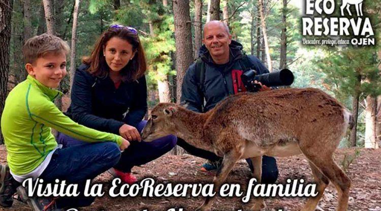 Taller para niños y toda la familia 'Bosque Escuela' en Ojén (Málaga)
