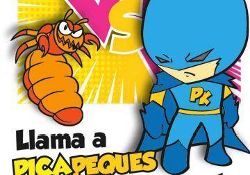Acaba con los piojos en Málaga capital y provincia con el servicio a domicilio de PicaPeques