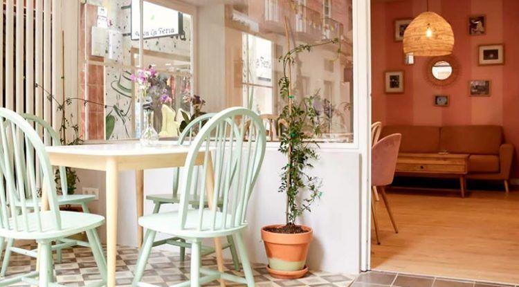 Sr. Nilsson Café en Málaga, cafetería ideal para ir con niños