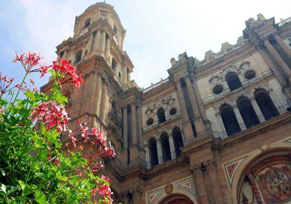 Descubre Málaga y su provincia con niños: Tour personalizado, a pie y en español