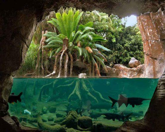 Bioparc Fuengirola alberga una selva…¡Llena de vida!