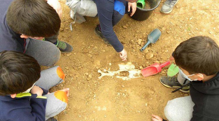 Campamento de verano para niños sobre Prehistoria en Málaga con ArqueoEduca