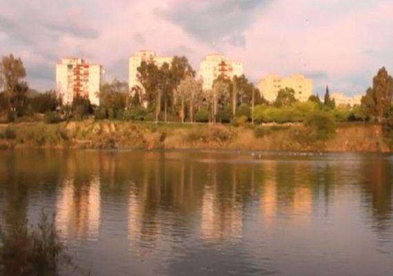 Naturaleza en plena Málaga para ir con niños: parque de la Laguna