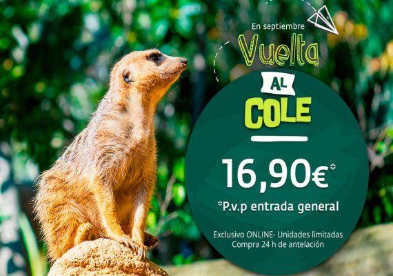 Promoción de vuelta al cole con Bioparc Fuengirola para toda la familia